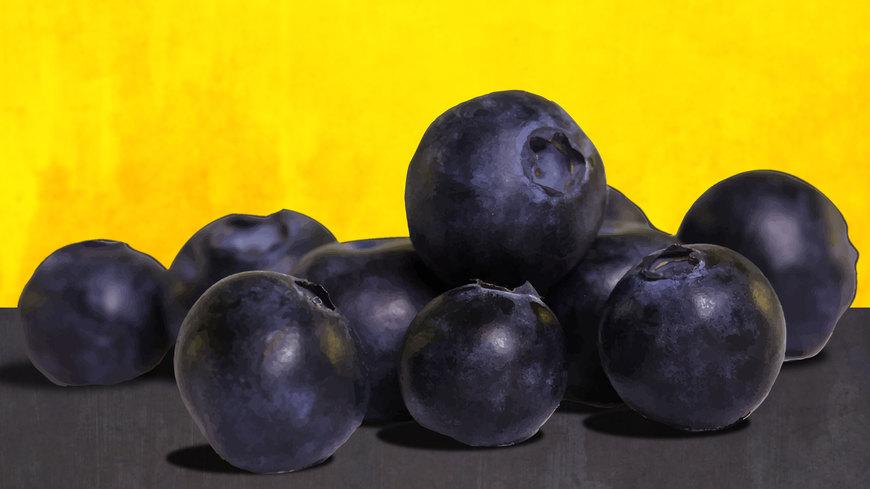 Entrepreneur brings blueberries to Lebanon