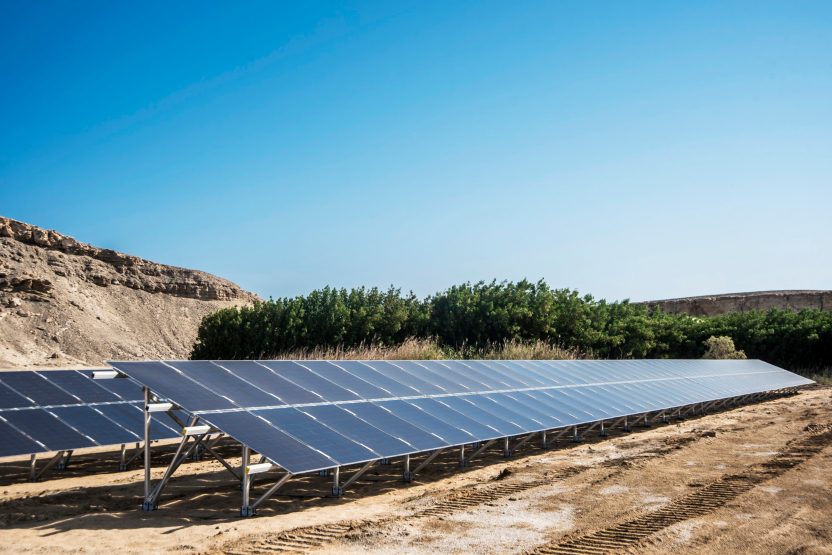 KarmSolar Inks $90 Million Deal To Power Egypt's Cairo3A Poultry