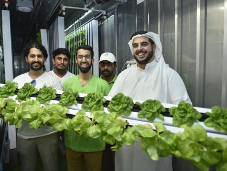 Green machine: Madar Farms' plug-and-play harvests