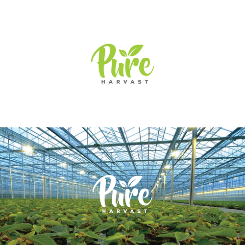 """بيور هارفست للمزارع الذكية وهي شركة شرق أوسطية للزراعة باستخدام التكنولوجيا المتقدمة تنهي تمويل أول مرحلة Seed"""" """" بحجم 4.5 مليون دولار أمريكي"""